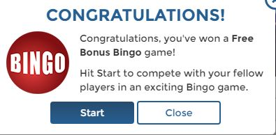 Bingo for free win money
